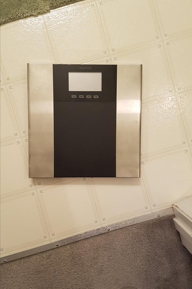 scale and body fat analyser