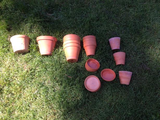 Box of Small Terra Cotta Pots & Saucers