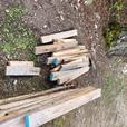 FREE: assorted scrap wood