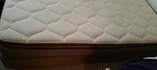 Queen spare bed