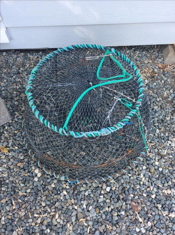 Prawn trap