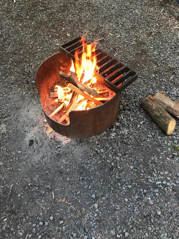 WANTED: Free Dry Fire Wood