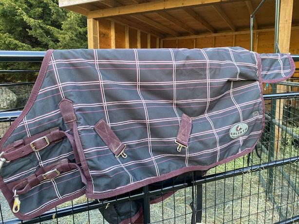 Goliath mini horse blanket