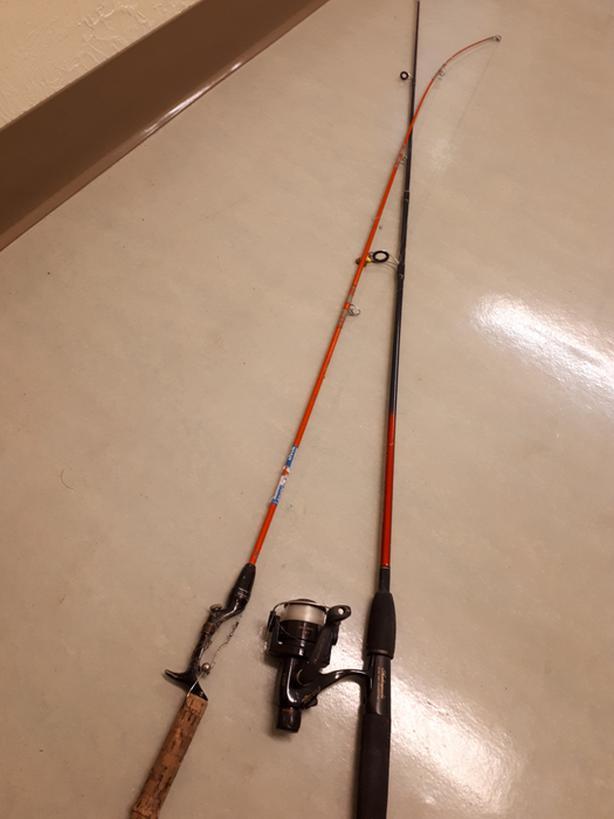 Free fishing poles