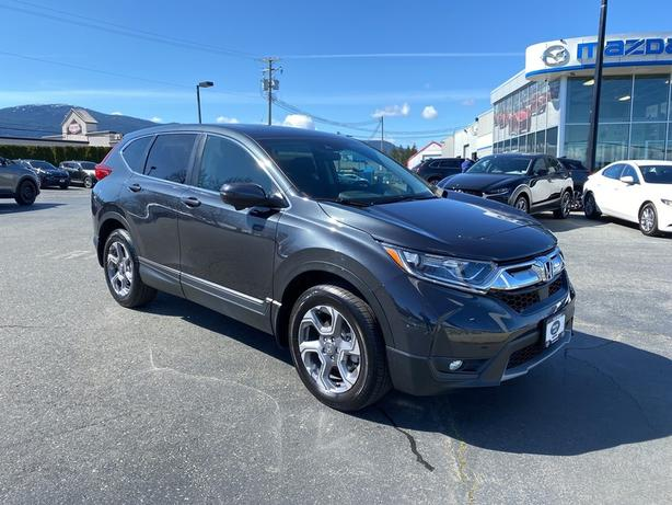 Pre-Owned 2019 Honda CR-V AWD ONE LOCAL OWNER / ACCIDENT FREE / SERVICE RECORDS!