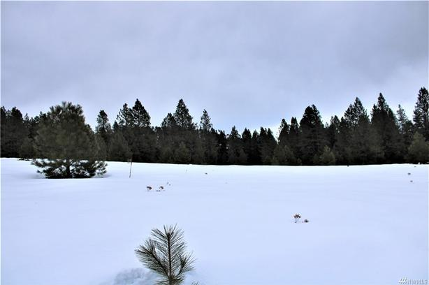 Lightly Treed 5 Acres