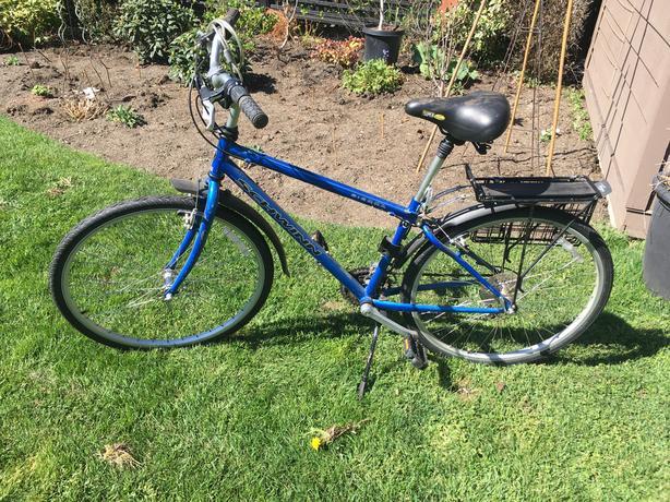 Ladies Schwinn 21 speed bicycle