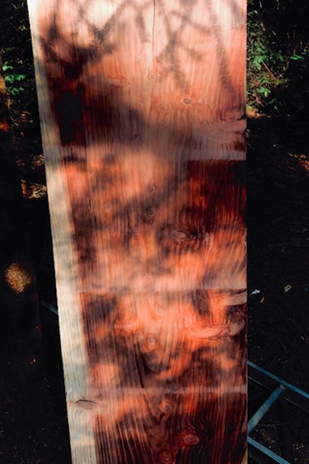 Gorgeous Live Edge Slabs All Shapes And Sizes