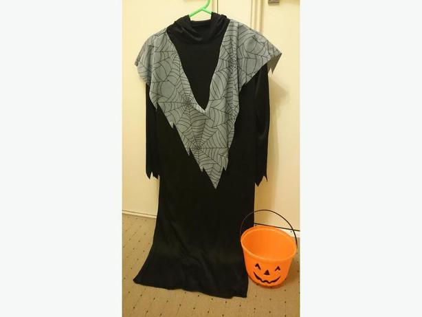 grim reaper with hood pumpkin. treat bucket not included £3.50