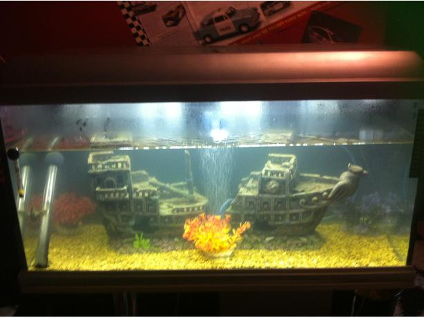 Fish tank boat accesorie outside black country region for Split fish tank