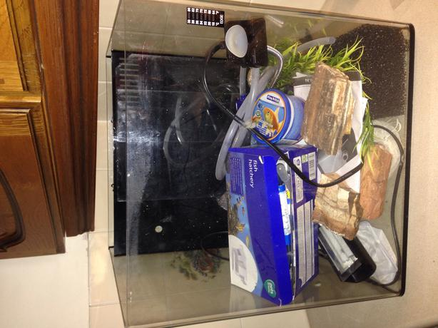 Fish tank sandwell wolverhampton for Fish tank with built in filter
