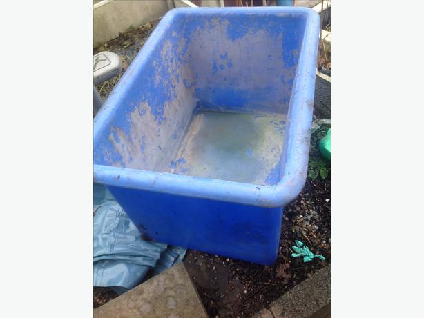 Blue quarantine holding transport show vat koi pond fish for Koi quarantine pond