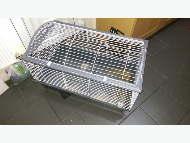 used ferplast indoor rabbit guinea pig cage outside