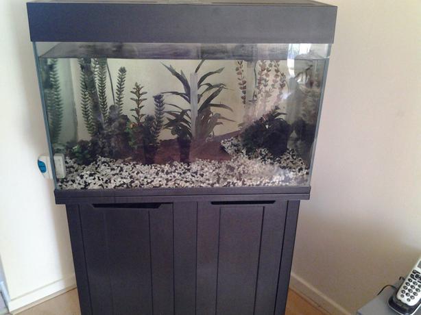 Fish tank stand tipton wolverhampton for Modern fish tank stand