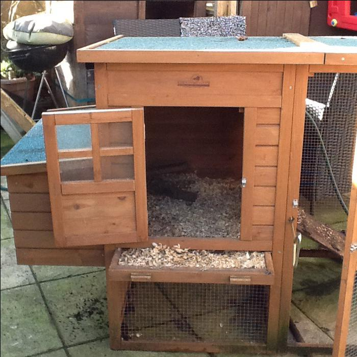 Chicken duck coop willenhall dudley for Can ducks and chickens share a coop