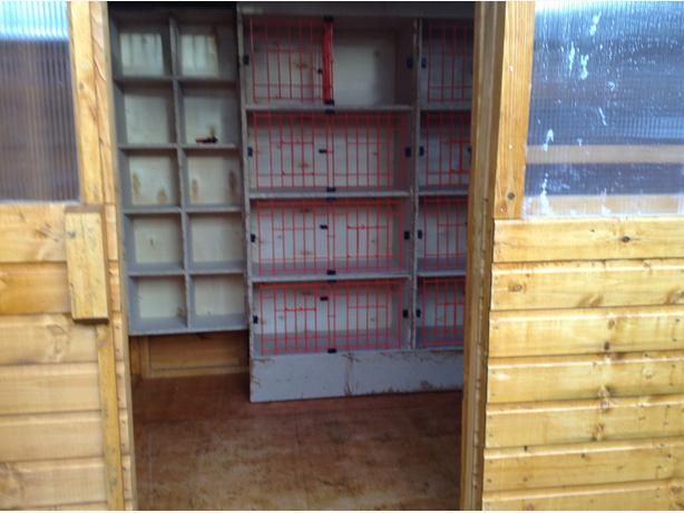  Log In needed £480 · Blakes pigeon loft 7ft x 6ft