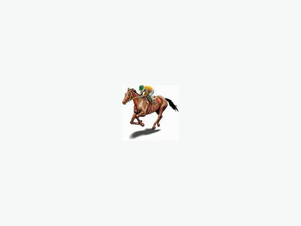 live horse racing commentary