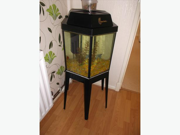 Octagonal shape fish tank on metal stand with pump walsall for Metal fish tank stand