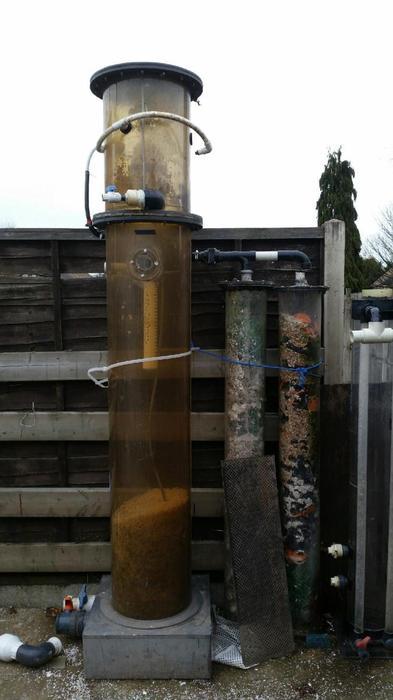 Koi carp filter wednesbury sandwell for Pool koi goggles