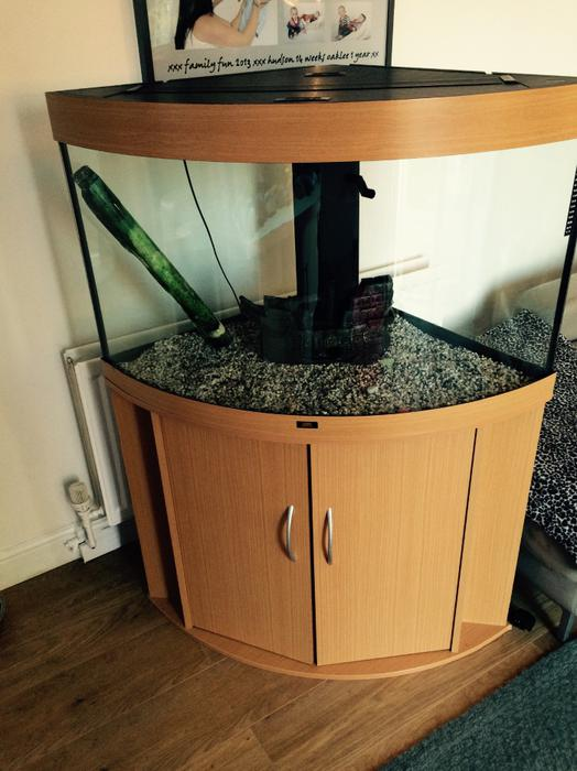 Fish tank for sale 145 outside black country region dudley for Used fish tanks for sale