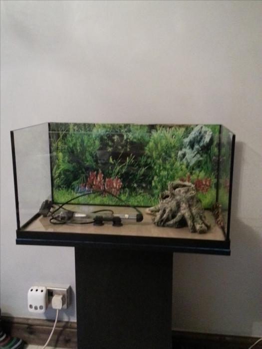 how to set up a marine tank uk
