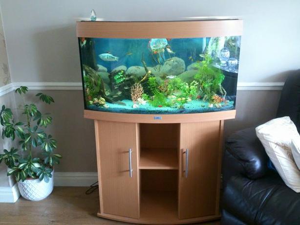 3 ft juwel vision 180 fish tank cabinet with filter heater etc stourbridge wolverhampton. Black Bedroom Furniture Sets. Home Design Ideas