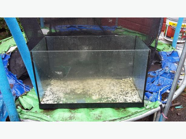 Leaky fish tank sandwell dudley for How to reseal a fish tank