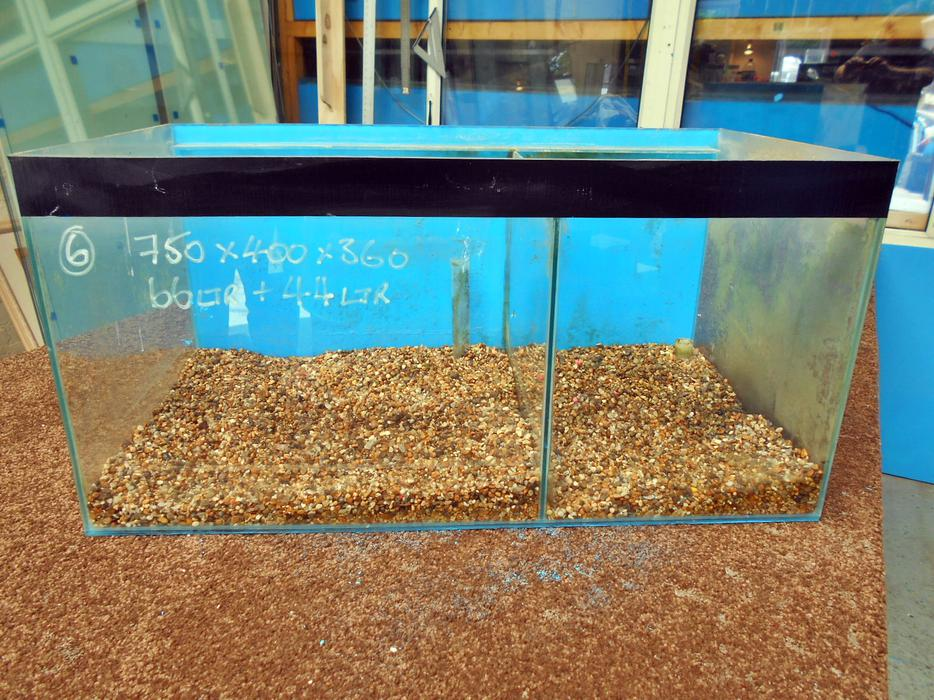 Aquariums various sizes bloxwich sandwell for Used fish tanks for sale many sizes