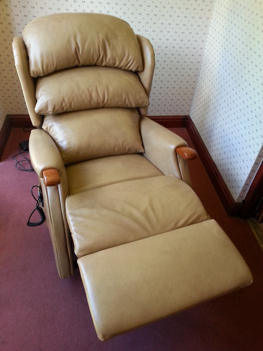 Hsl Celebrity Linton Real Leather Rise And Recline Chair