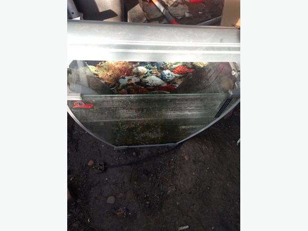 Unusual fish tank for sale darlaston walsall mobile for Amazon fish tanks for sale