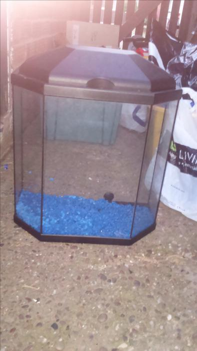 Hex fronted fish tank willenhall dudley for Hexagon fish tank lid
