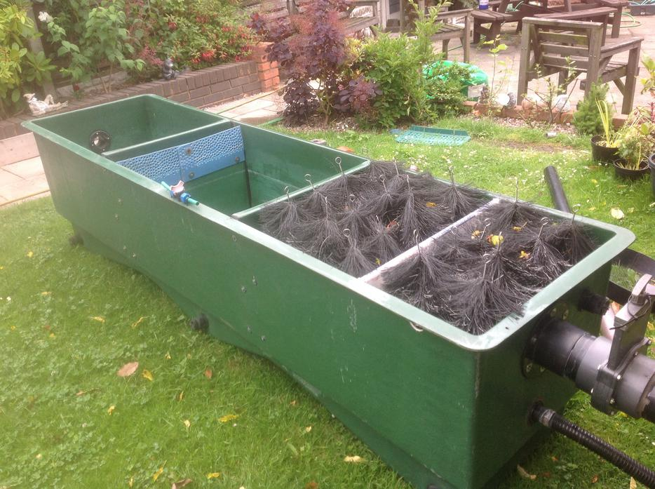 Large Koi Multi Bay Pond Filter Bloxwich Dudley