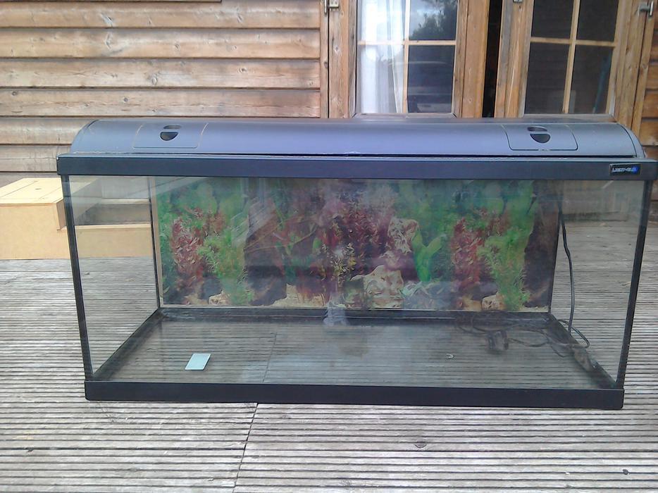 3 Foot Fish Tank Brownhills Walsall