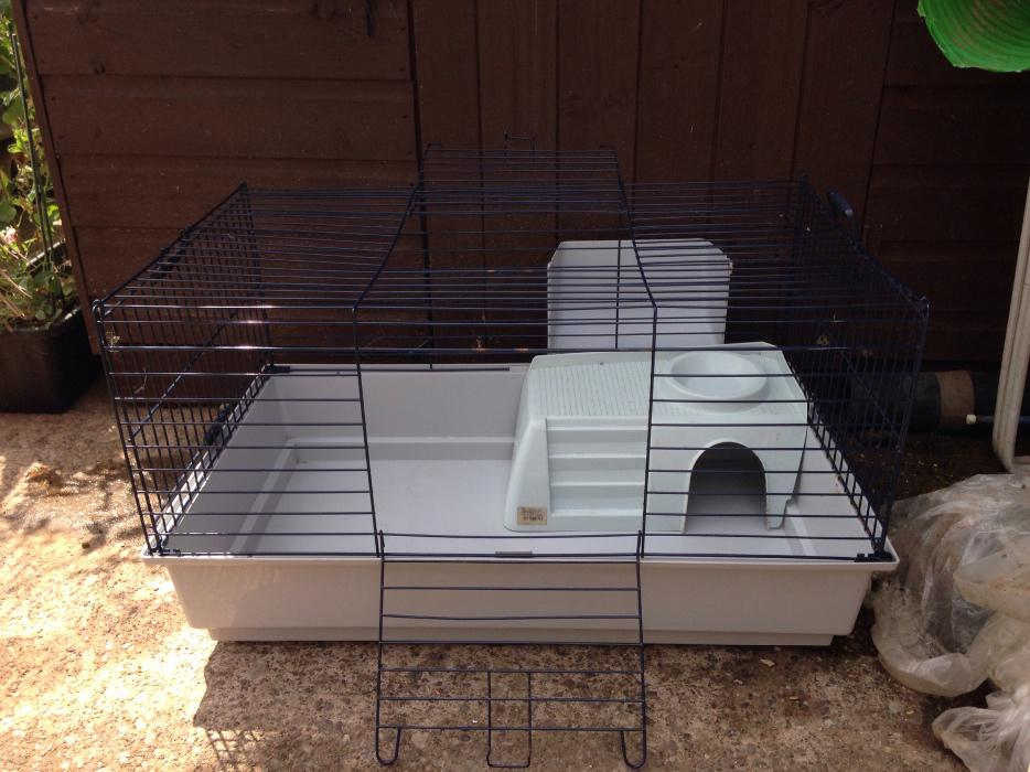 Guinea pig cage for sale outside black country region for Guinea pig and cage for sale