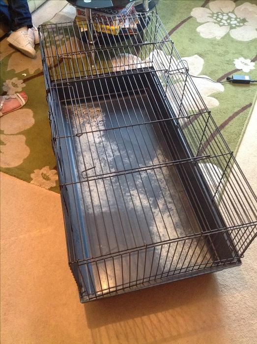 large indoor rabbit cage kingswinford wolverhampton. Black Bedroom Furniture Sets. Home Design Ideas