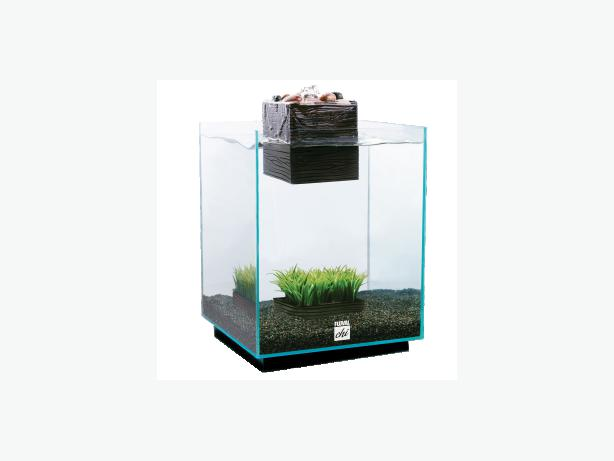 Fluval chi fish tank willenhall dudley for Fluval chi fish tank