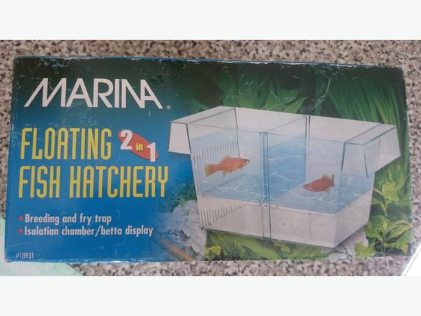 floating 2 in 1 fish hatchery