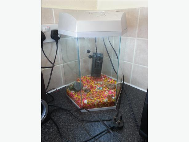 Hexagon fish tank with light and filter in the way need for Hexagon fish tank