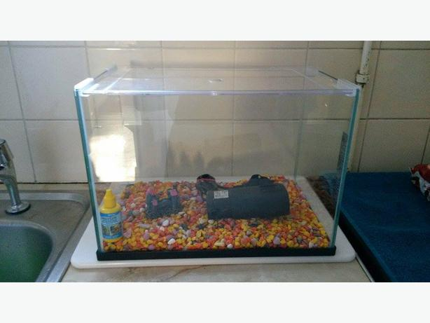 fish tank accessories for sale rowley regis sandwell