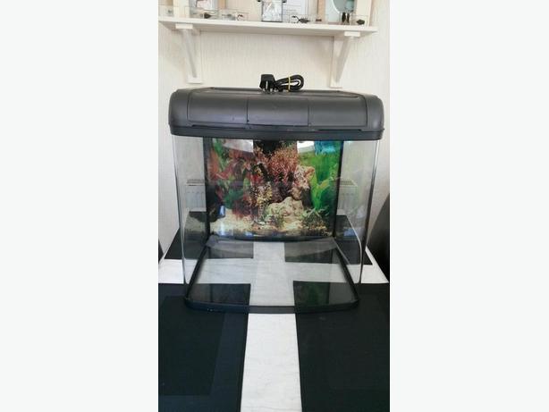 Fish tank aquarium for sale rowley regis dudley for Aquarium for sale uk