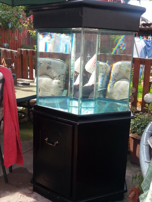 Hexagon fish tank and stand tipton dudley for Hexagon fish tank lid