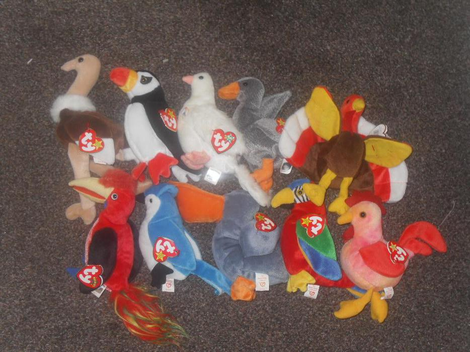 Ty Beanie Babies 1 50 Each Or 10 For 163 10 Sedgley Dudley