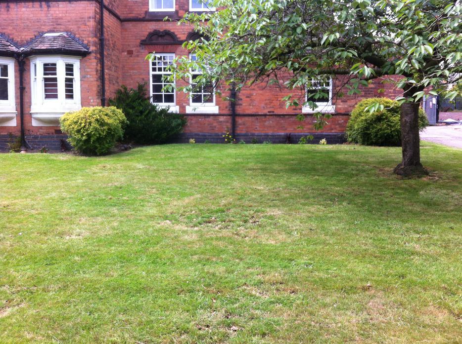 Simms Property Maintenance