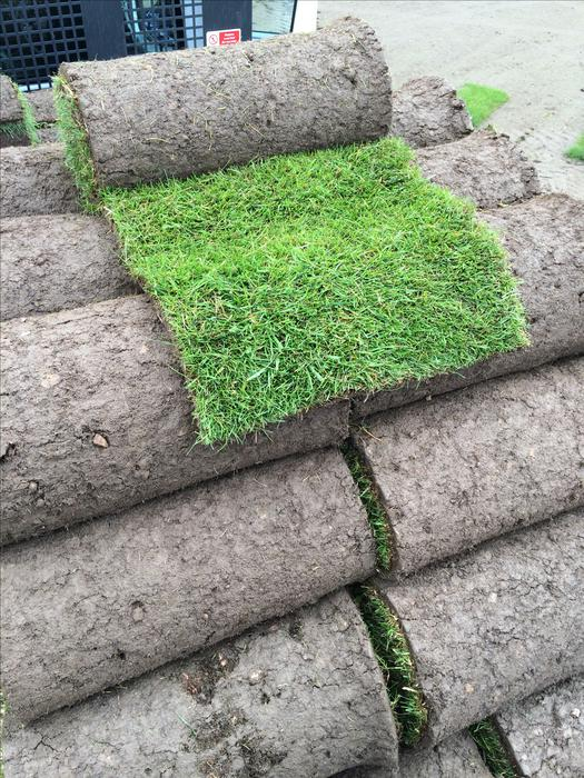 Turf premium quality top soil landscaping grass seed for Quality topsoil