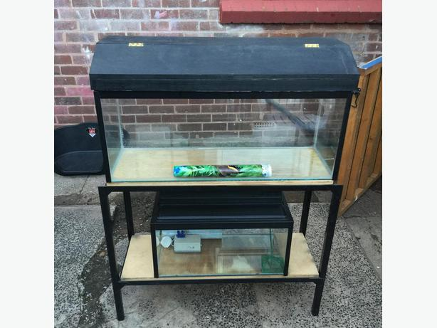 3ft and a 2ft fish tank for sale rowley regis wolverhampton for Amazon fish tanks for sale