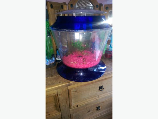Fish Tank Starter Kit Tank Walsall Wolverhampton