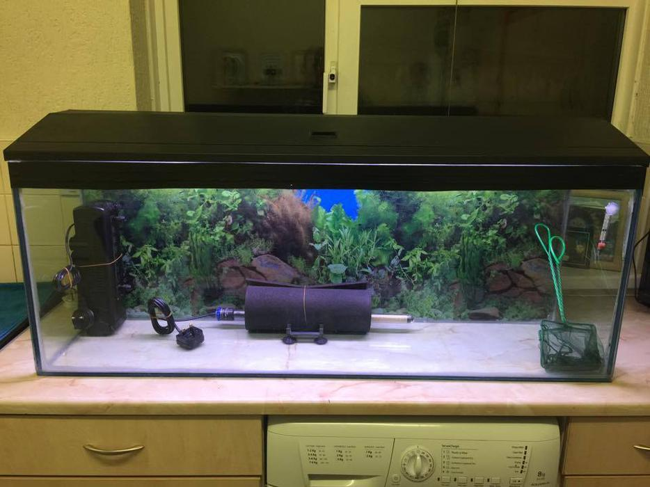 4ft full tropical fish tank aquarium setup for sale rowley for Amazon fish tanks for sale