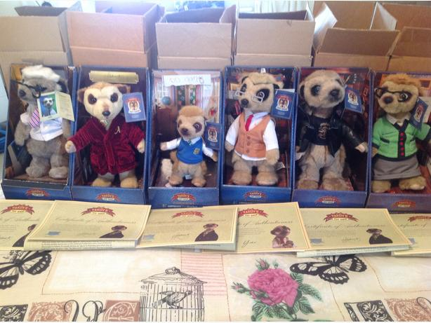 Genuine meerkats with box and certificates
