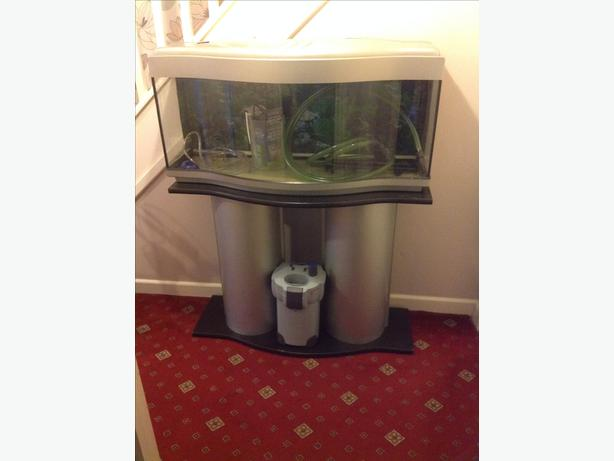 For sale fish tank kingswinford wolverhampton for Used fish tanks for sale many sizes