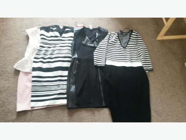 bnwt ladies size 16 dresses